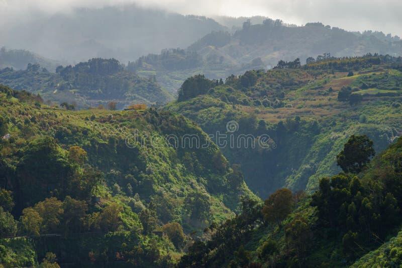 Piękny wiejski krajobraz Gran Canaria, Hiszpania obraz stock