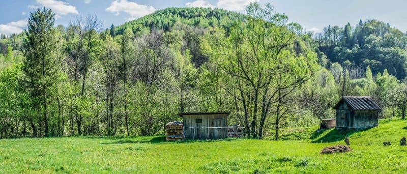 Piękny wioski podwórze w Carpathians zdjęcia royalty free