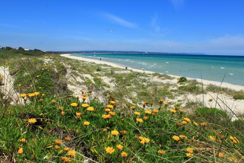 Piękny wiosna dzień przy Carrum plażą fotografia stock