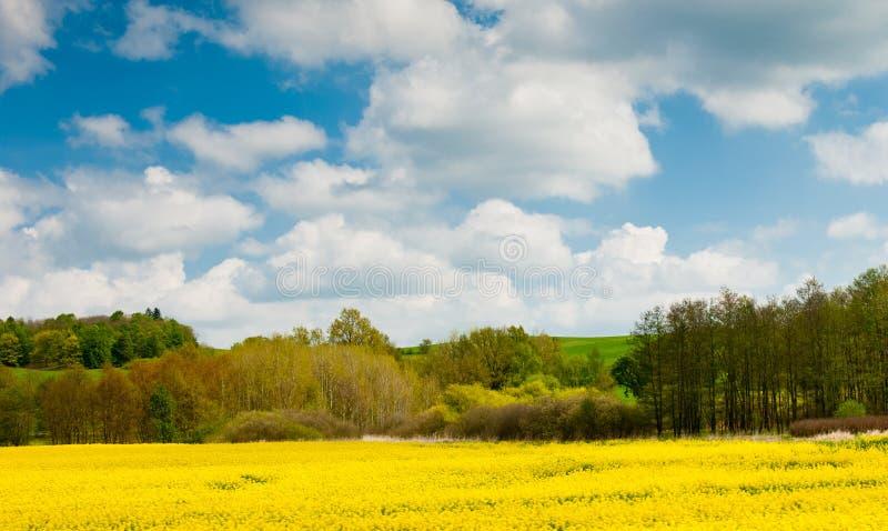 Piękny wiosna krajobraz, republika czech obraz royalty free