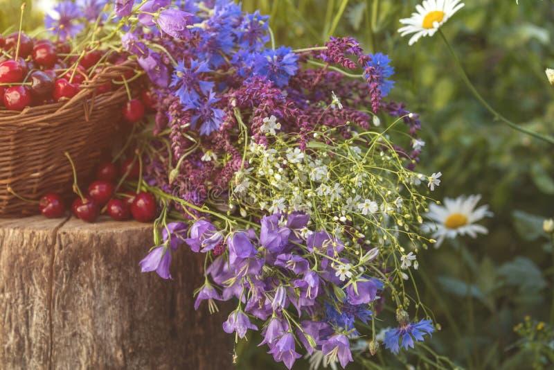 Piękny wiosny tło z wiśniami i kwiatami Światło słoneczne, zdjęcia royalty free