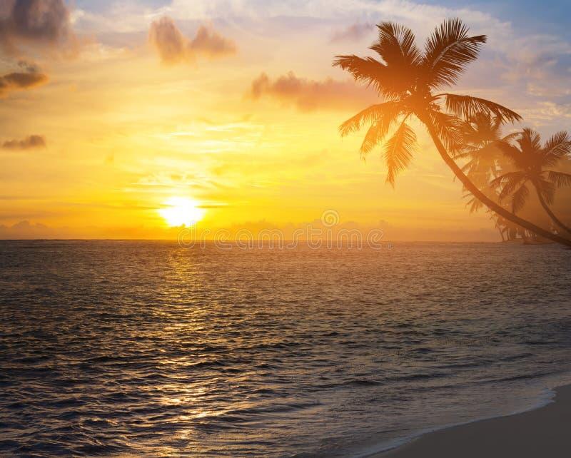 Piękny wschód słońca nad karaibską tropikalną plażą obraz stock