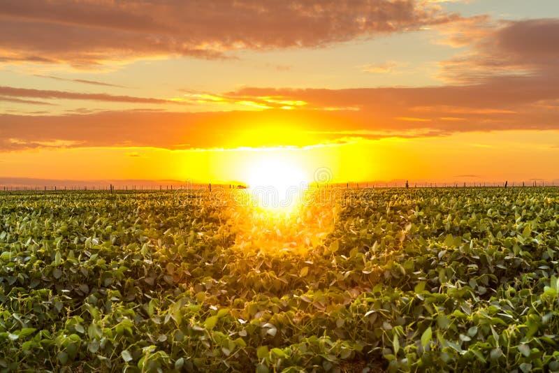 Piękny wschód słońca w wsi obrazy royalty free