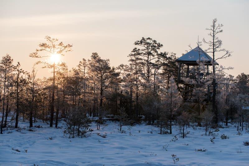 Piękny wschód słońca w zimie obrazy royalty free