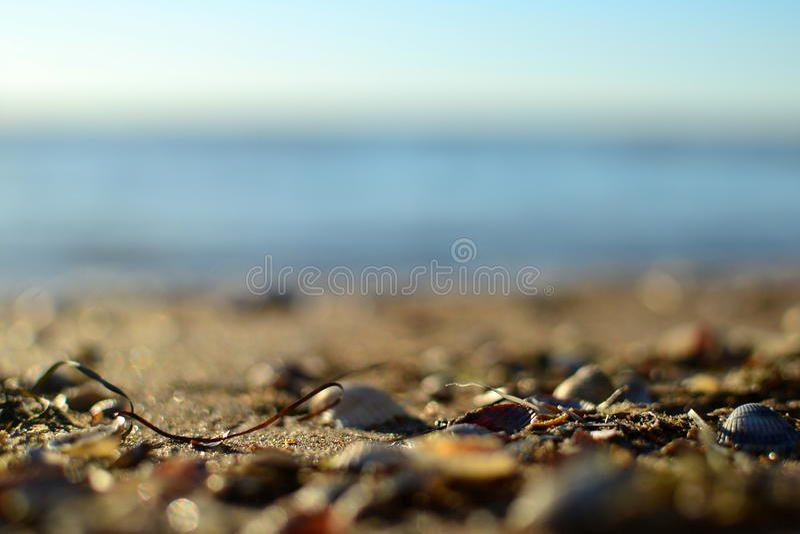 Piękny wybrzeże Azov morze zdjęcia royalty free