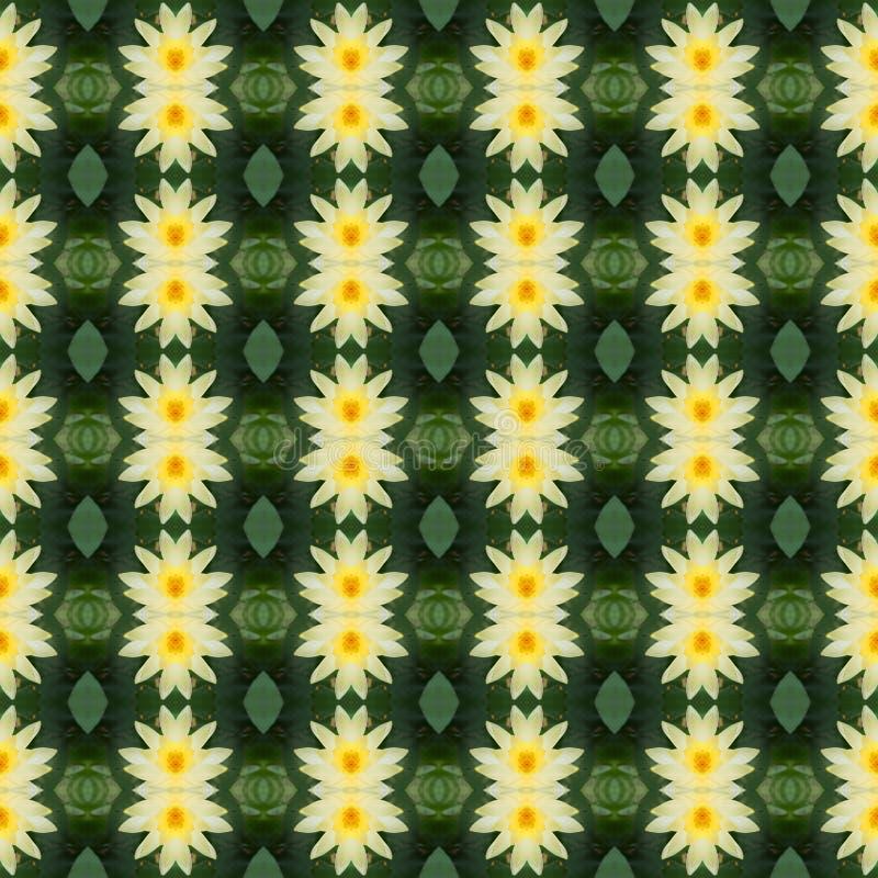 Piękny yello lotosowy kwiat bezszwowy royalty ilustracja