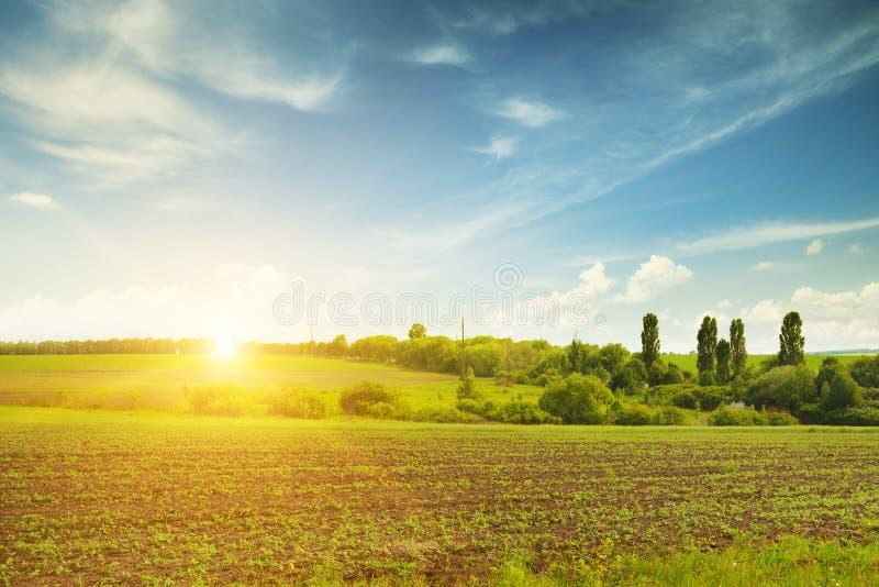 piękny zachód słońca fotografia stock