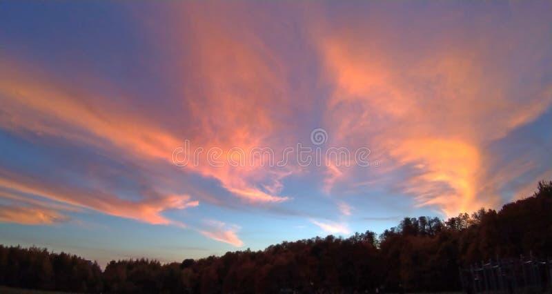 piękny zachód słońca Błękitny i różowy niebo przy zmierzchem nad lasem obrazy stock