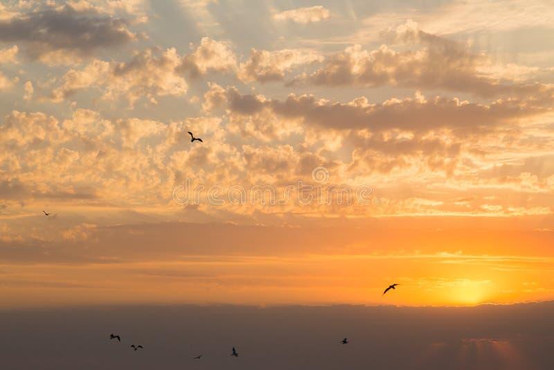 piękny zachód słońca morza zdjęcia stock