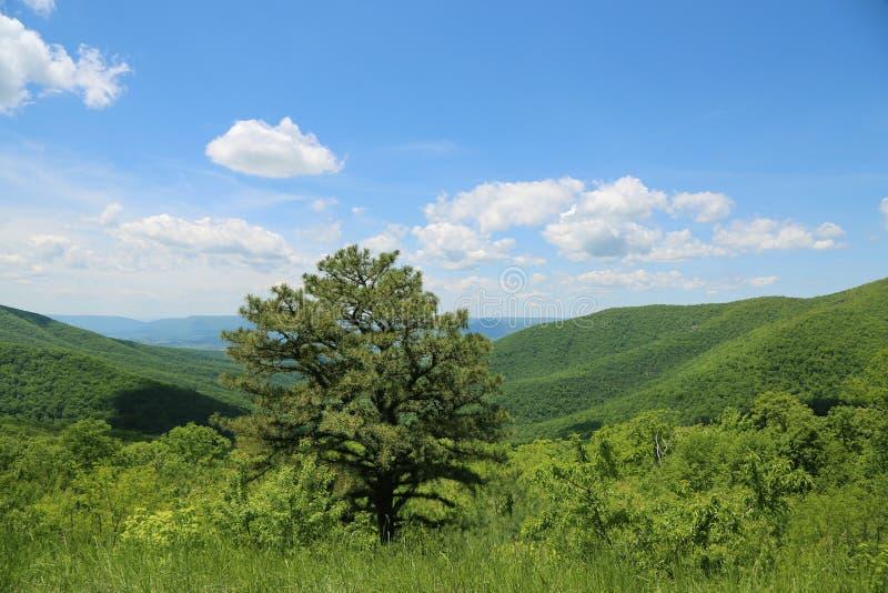 Piękny Zachodnia Virginia fotografia stock