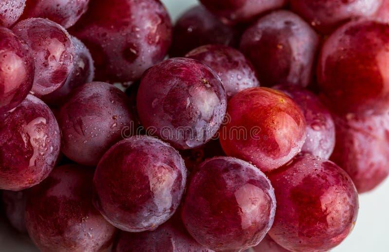 Piękny zakończenie grono czerwonych winogron atramenty na stole zdjęcia stock