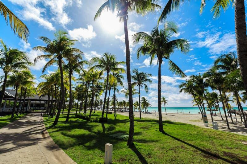 piękny zapraszający widok od tropikalnego ogródu na kubańczyka Varadero plaży, spokojny turkus oferty oceanu tło zdjęcie stock