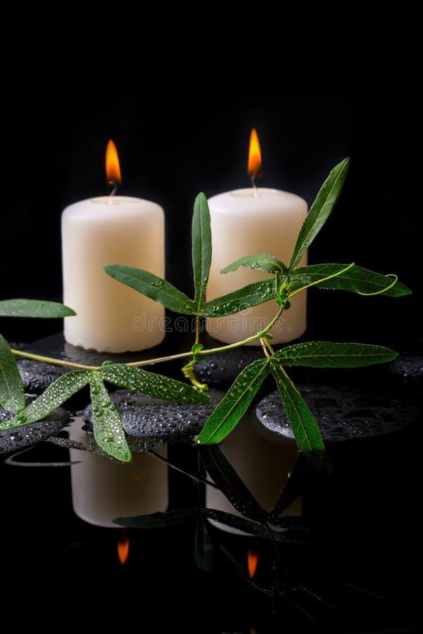 Piękny zdroju położenie zielony tendril passionflower, świeczki zdjęcie stock