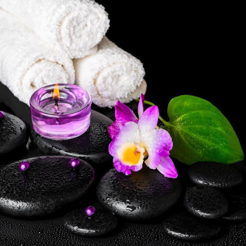 Piękny zdroju pojęcie purpurowy storczykowy dendrobium z rosą, blac zdjęcie royalty free