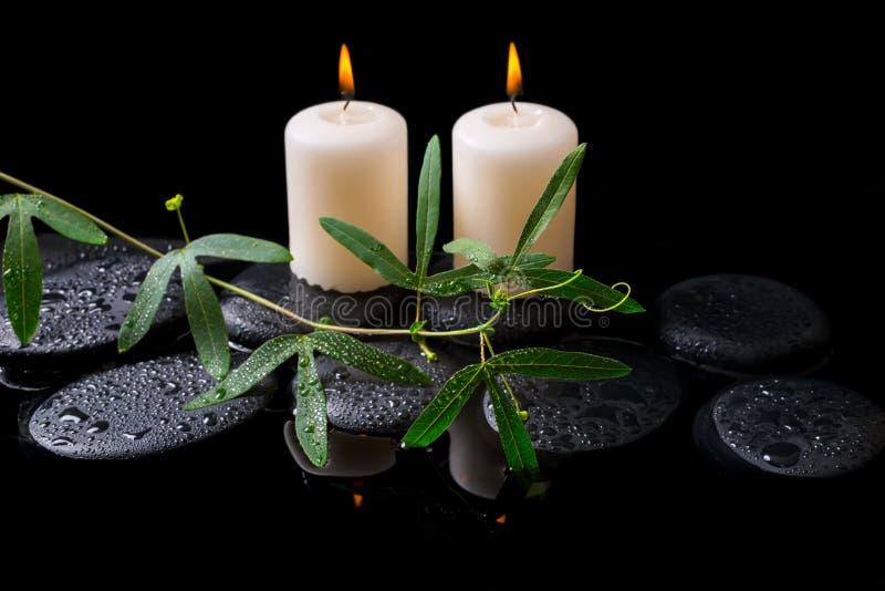 Piękny zdroju pojęcie zielony tendril passionflower, świeczki zdjęcie stock