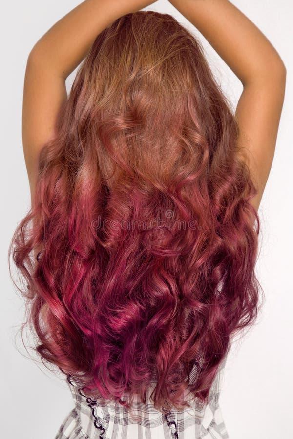 Piękny, zdrowy naturalny włosy, Piękno włosy obraz royalty free