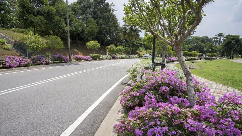 Piękny zieleń krajobraz w Putrajaya Malezja fotografia stock