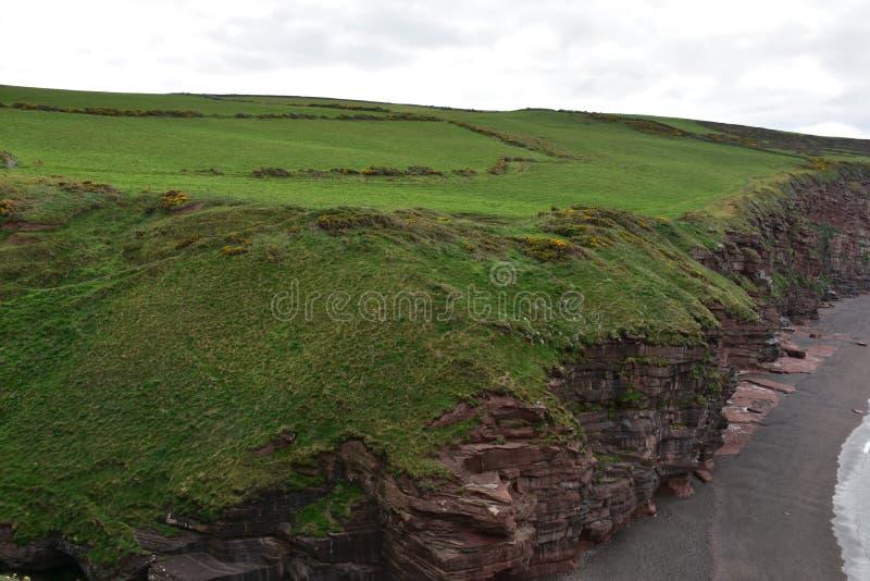 Piękny Zielonej trawy pole Na górze Dennych falez na Irlandzkim morzu fotografia royalty free