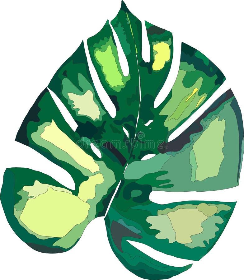 Piękny zielony tropikalny śliczny uroczy cudowny Hawaii lata kwiecisty ziołowy liść palmy royalty ilustracja