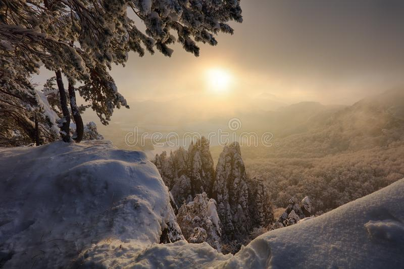 Piękny zima krajobraz z śniegiem zakrywał drzewa, Sistani mou zdjęcia stock