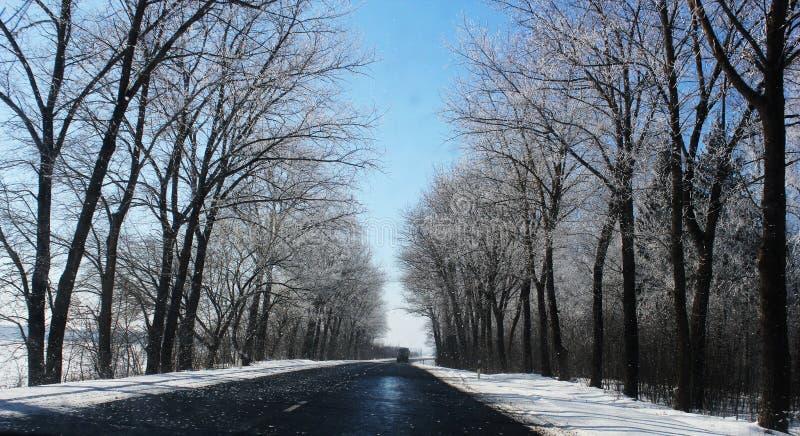 Piękny zima krajobraz z asfaltową drogą, lasem i niebieskim niebem, zdjęcia royalty free