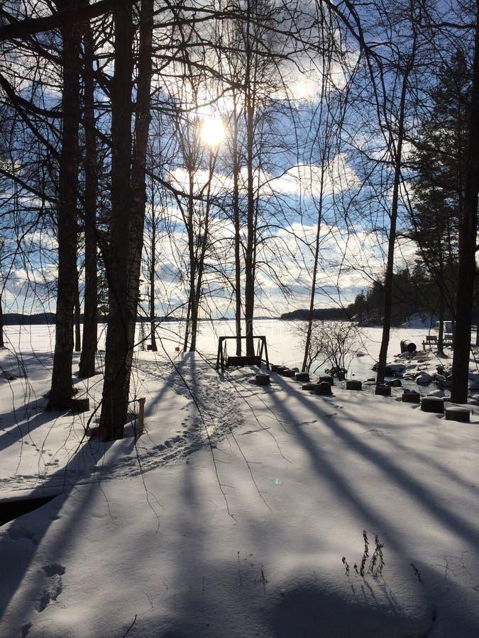 Piękny zima las w Finlandia obrazy stock