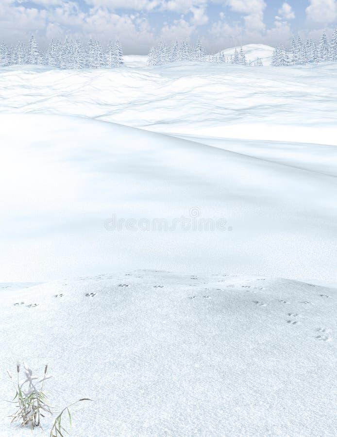 Piękny zima lasu krajobrazu tło fotografia stock