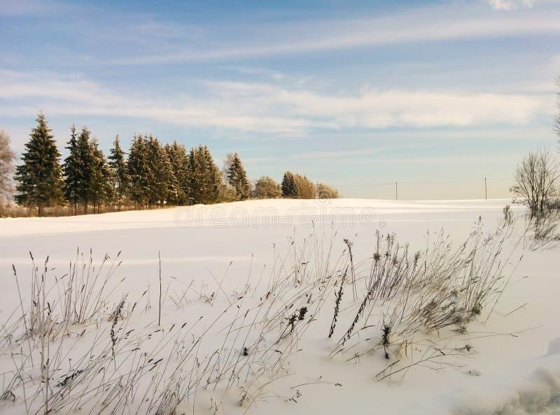 Piękny zimy landscape Śnieżny pole, las i niebieskie niebo, obraz stock