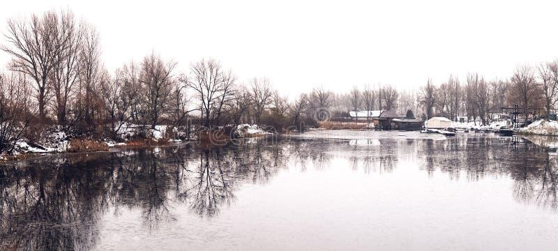 Piękny zimy landscape Drzewa odbijali w wodzie jezioro obraz royalty free