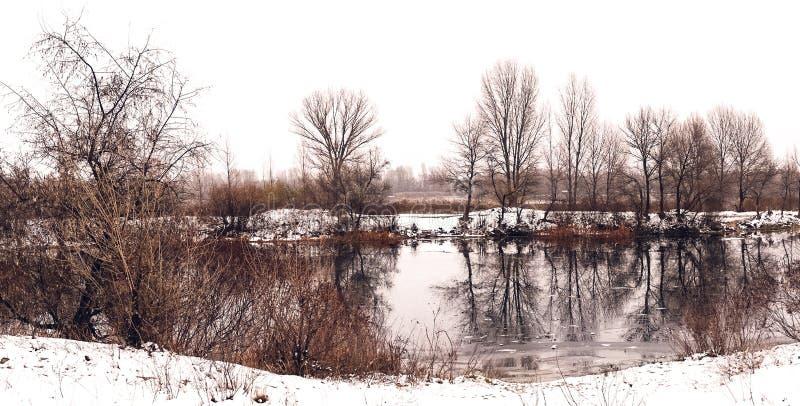 Piękny zimy landscape Drzewa odbijali w wodzie jezioro fotografia royalty free