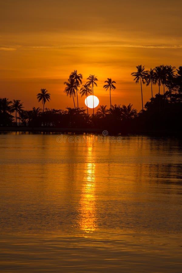 Piękny zmierzch na plaży i koksu drzewka palmowego sylwetce w wyspy Koh Chang, Tajlandia zdjęcie royalty free