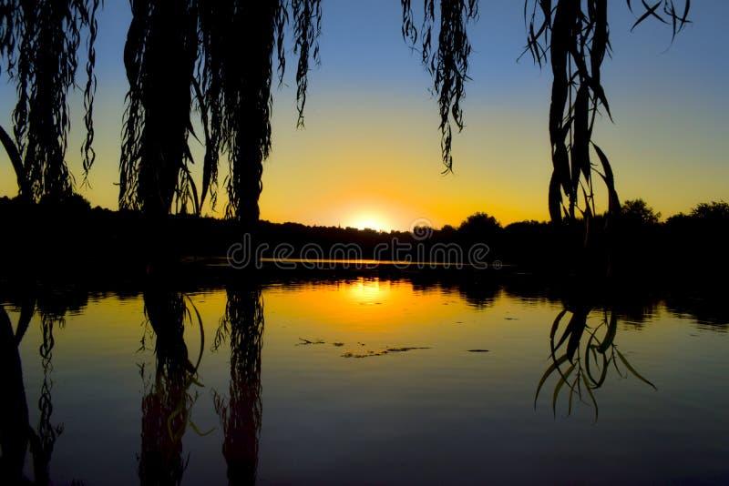 Piękny zmierzch nad parkowym jeziorem zdjęcia stock