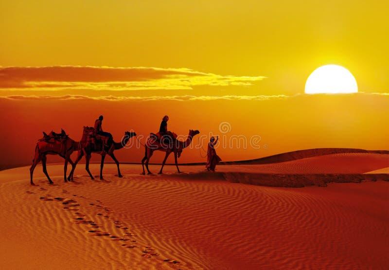 Piękny zmierzch przy pustynią, Jaisalmer, India fotografia stock