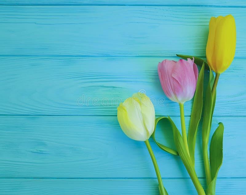 Pięknych świeżych piękno tulipanów romantyczny świętowanie na drewnianym, miejsce dla teksta zdjęcia royalty free