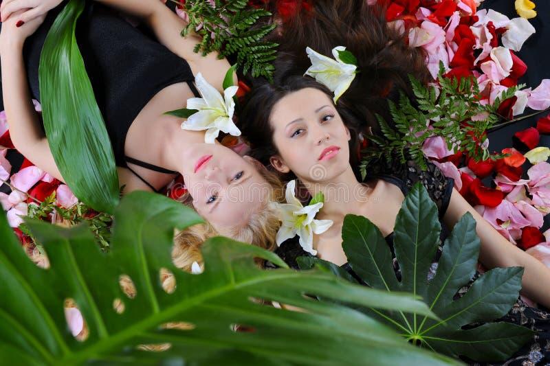 pięknych płatków różane kobiety fotografia royalty free