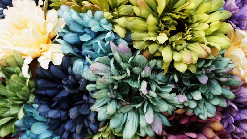 Pięknych sztucznych stokrotki gerbera kwiatów zamknięty up obraz stock