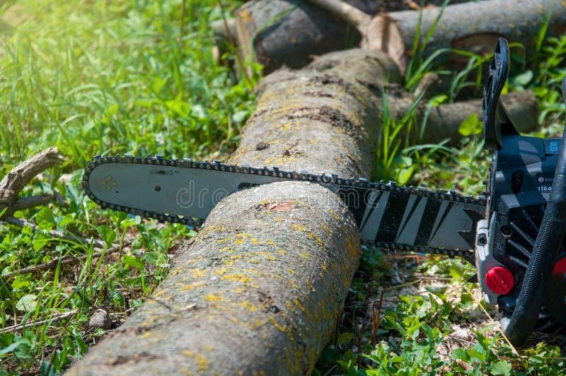 Piła łańcuchowa ciie logującego się tło zielona trawa Ostrzy z?by zdjęcie royalty free