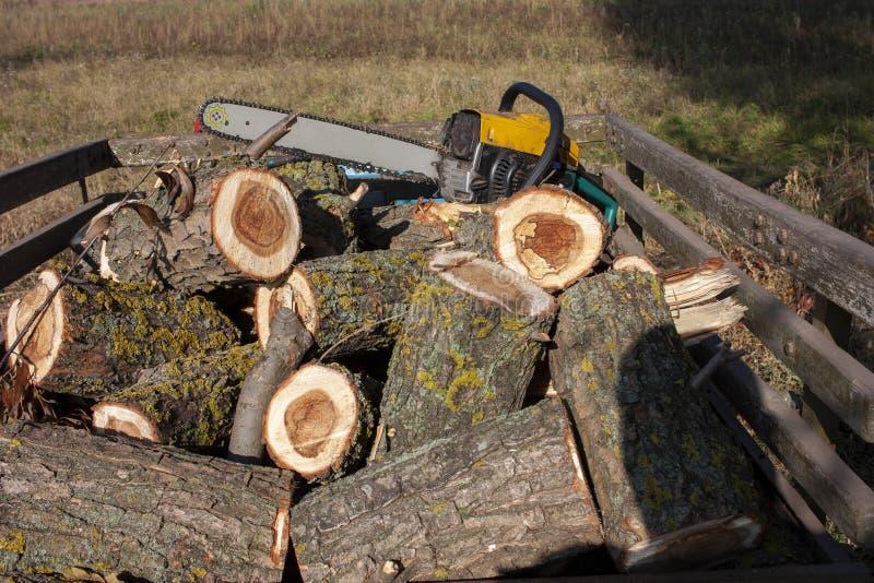 Piła drwala leży na drewnie Drewno piłowane i piła łańcuchowa Zbliżenie fotografia stock