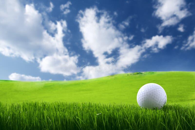 piłka golf fotografia stock