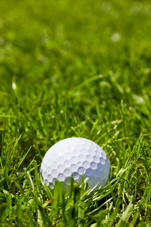 Piłka golfowa zdjęcie stock
