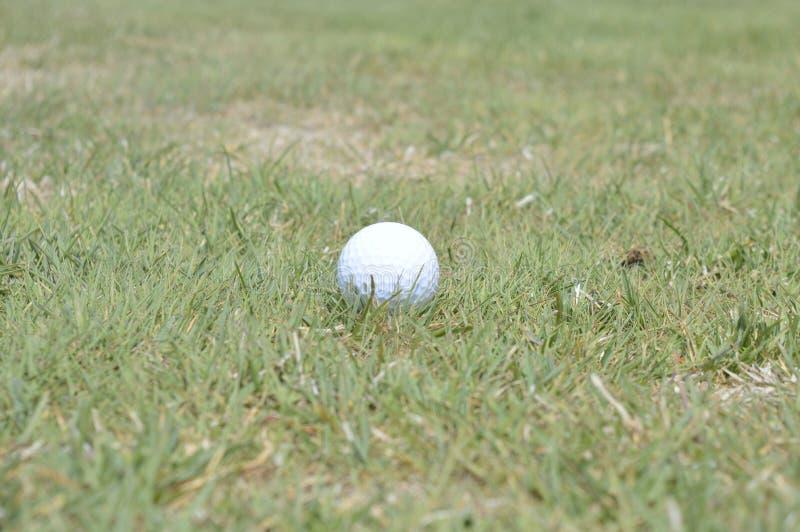 Piłka golfowa na farwaterze obraz stock
