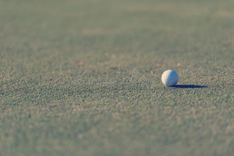 Piłka golfowa na trawie zdjęcia stock