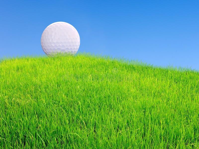 Piłka golfowa na trawie od above zdjęcia stock