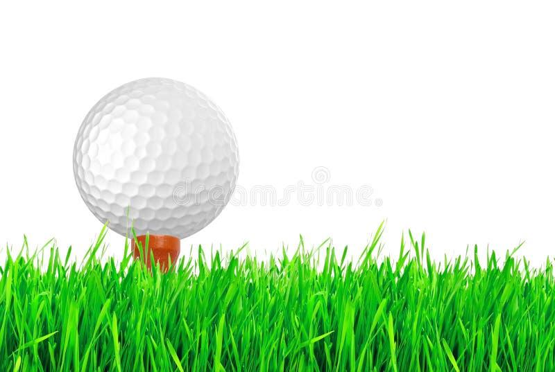 Piłka golfowa na zielonej trawie pole golfowe zdjęcie royalty free