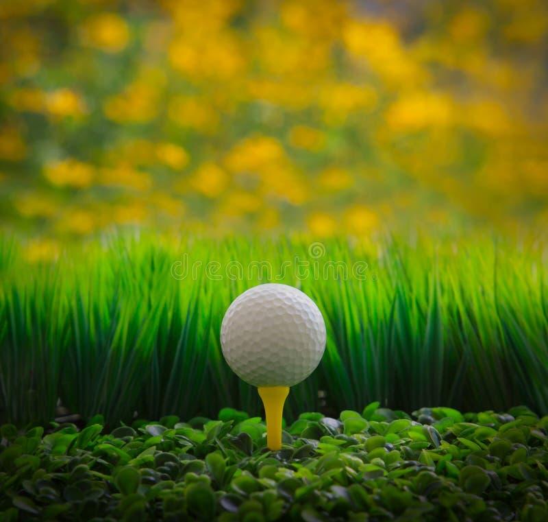 Piłka golfowa na zielonej trawy polu i żółtym plamy bac fotografia stock