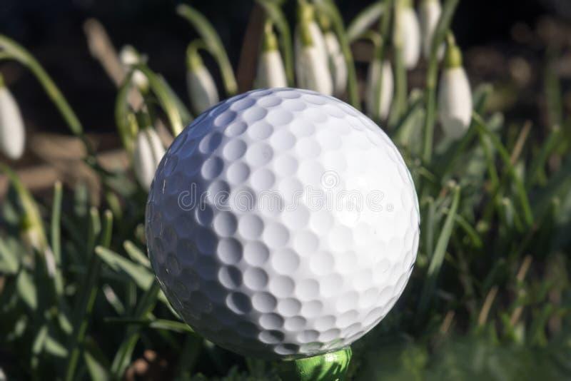 Piłka golfowa na zielonym trójniku na polu golfowym zdjęcia stock