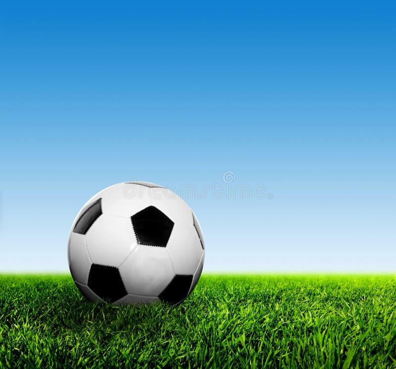 Piłka na trawie przeciw niebieskiemu niebu 3d piłka nożna biel futbolowi karły fotografia stock