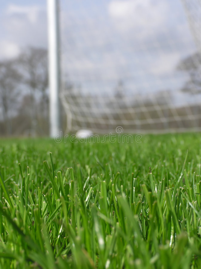 piłka nożna netto trawy zdjęcie royalty free