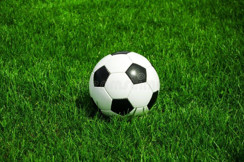 Piłki nożnej piłki biel na zielonej trawie naturalnej w pogodnym lecie i plecy fotografia royalty free