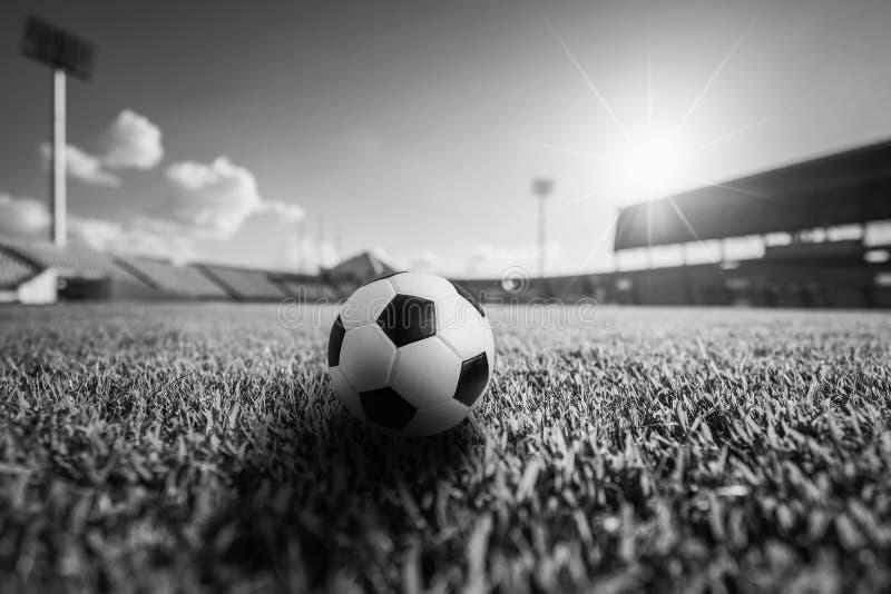 Piłki nożnej piłka na trawie w stadium piłkarski obrazy stock